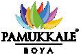 Pamukkale Boya Logo