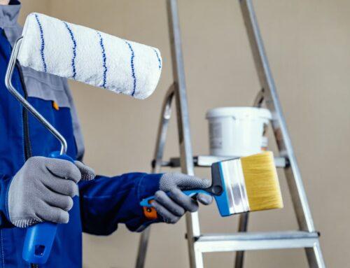 REHBER: Evimi Boyayacağım